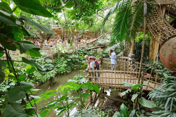 In de vakantie: slapen in de jungle van Center Parcs