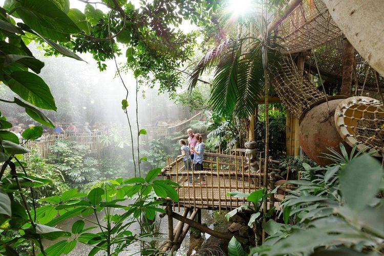 Leuk in de vakantie: nacht in de jungle van Center Parcs