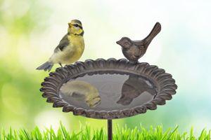 Klein vogelbadje voor in de tuin (Ø 19 cm)