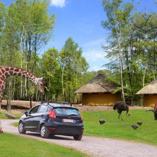 Korting Safaripark Monde Sauvage