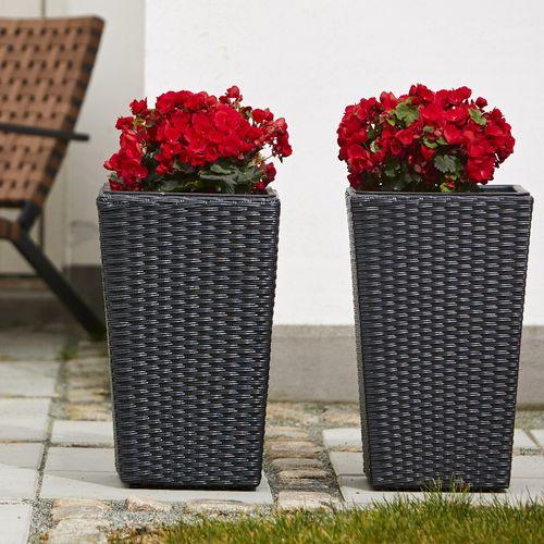 2 zwarte plantenbakken