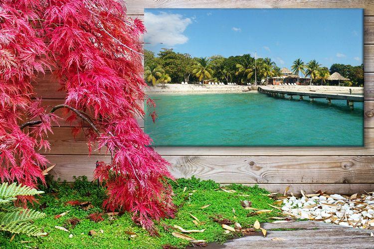 Foto tuinposter je mooiste foto op een tuinposter cm