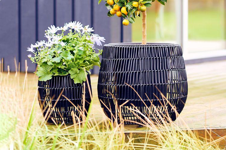 Set van 2 rotan plantenstandaards