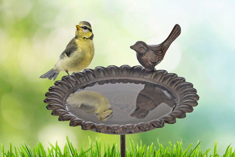 Vogelbadje voor in de tuin (19 x 79,5 cm)