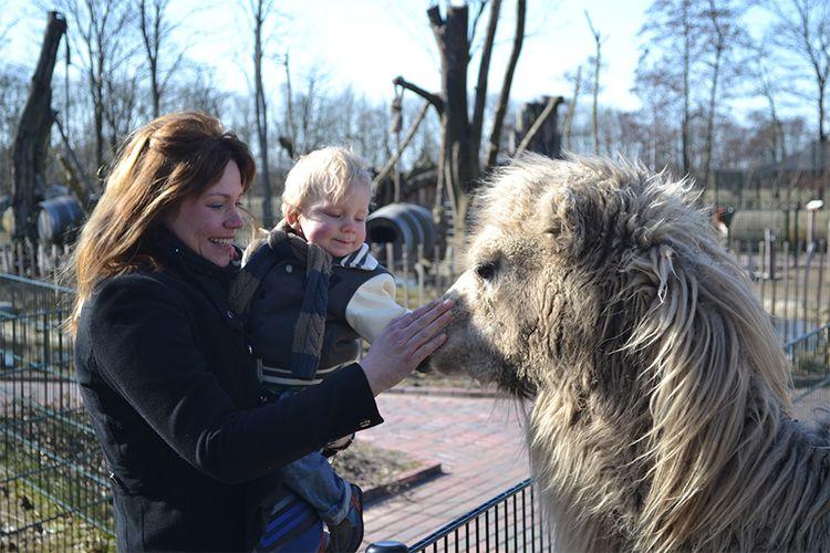 Een dag naar Winter-Sanjesfertier in Friesland (3 p.)
