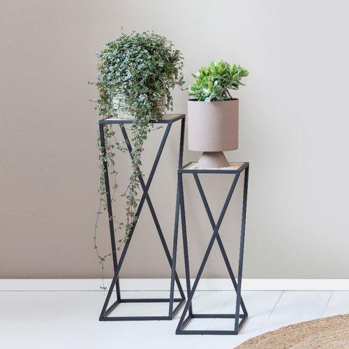 2 plantenstandaarden