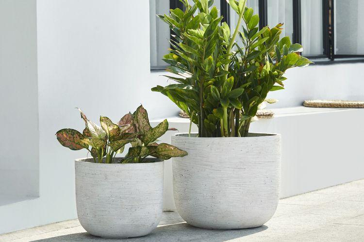 Set van 2 fiberclay plantenpotten (model: Base Concrete)