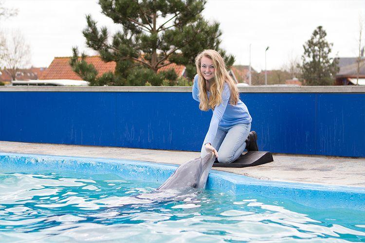 Dolfinarium Fotomoment - Entree + fotomoment met dolfijn ...