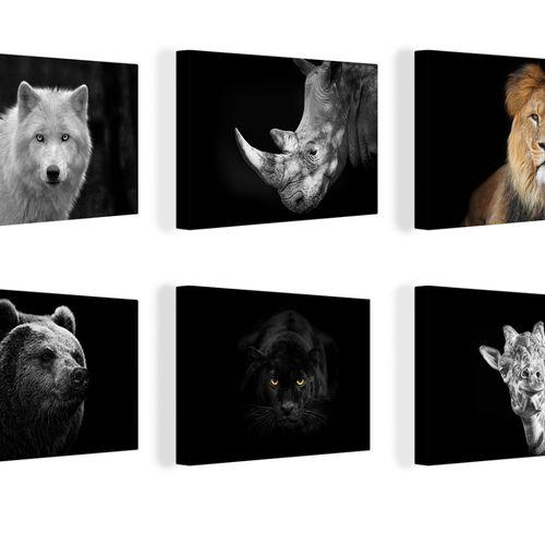 Canvas Dieren zwarte achtergrond 40x60 cm (12 varianten)