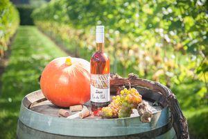 Op bezoek bij de wijnboer inclusief proeverij (2 p.)