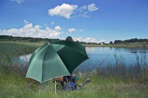 Grote visparaplu van Ø 220 cm inclusief draagtas